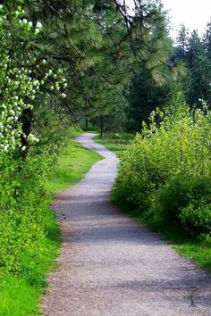11 visitors have checked in at Kalamalka Lake Provincial Park (Cosens Bay). Country Life, Country Roads, Forest Path, Garden Park, Land Of Enchantment, Country Scenes, Spiritual Path, Walk In The Woods, Pathways