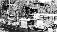 Bangkok - Floating market (Alex ADS)