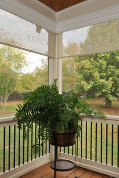 "Porch --  retractable screens - great for when it gets ""buggy""."