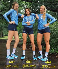 UNC Players by zaratustraelsabio on DeviantArt Volleyball Workouts, Volleyball Shorts, Female Volleyball Players, Women Volleyball, Cheer Picture Poses, Tall People, Volleyball Pictures, Long Tall Sally, Sporty Girls