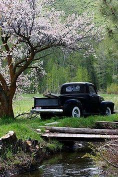 . Old antique pickup / truck, spring blossoms, creek, ... Country Life