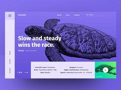 Conceptual Web UI Exploration