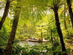 Bali Spa Resort | Official Site COMO Shambhala Estate Bali | Health Resort
