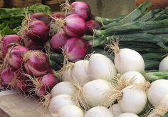 Planta en tu huerto: Cebollas
