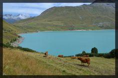 2015, Lac du Mont Cenis