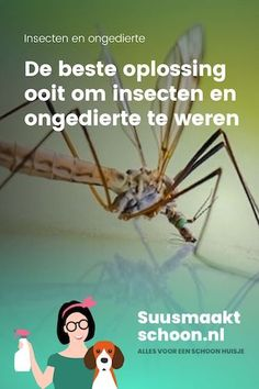 De beste oplossing ooit om insecten en ongedierte te weren Natural Cleaning Products, Natural Medicine, Natural Living, Pest Control, Things To Know, Housekeeping, Trauma, Good To Know, Cleaning Hacks