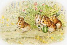 From my Beatrix Potter collection. I love anything Beatrix Potter. Beatrix Potter Illustrations, Beatrice Potter, Peter Rabbit And Friends, Illustration Noel, Nursery Rhymes, Nursery Art, Nursery Decor, Guinea Pigs, Tudor