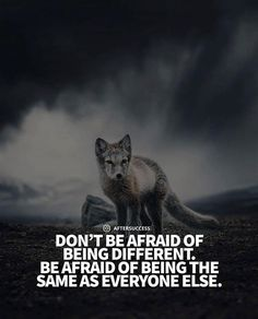 Dont be afraid of being different..