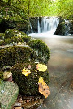 Autumn Falls, Exmoor National Park, Devon, England, UK