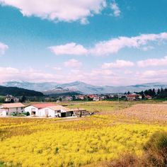 Basilicata _country