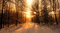 widescreen backgrounds sunbeam  (Minta Chester 1920x1080)