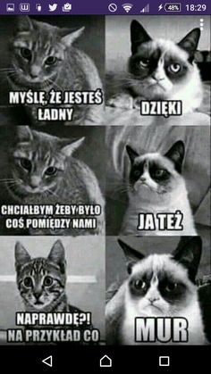 Nu i oke ^^ Funny Lyrics, Polish Memes, Funny Motivation, Weekend Humor, Funny Mems, Cute Cats And Dogs, Funny Video Memes, 3d Max, Grumpy Cat