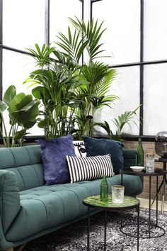 (Photo)Styled by for magazine Indoor Plants Online, Outdoor Furniture Sets, Outdoor Decor, Home Office Design, My Dream Home, Room Inspiration, New Homes, Lounge, Couch