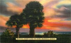 Vintage Postcard / Beach Sunset / 1940s / Brunswick, Georgia