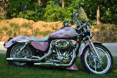 Pink Harley Davidson Motorcycle | Pink 2005 Harley Davidson Sportster - Harley Davidson Forums