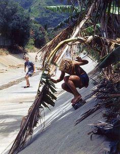 Skate boarding in paradise