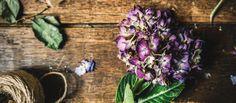 Easy, Natural Stress-Busting Remedies http://blog.massageenvy.com/easy-natural-stress-busting-remedies #massageenvyhi #aromatherapy #massage #lifestyle #health #wellness #beauty #joy #happiness #themoreyouknow