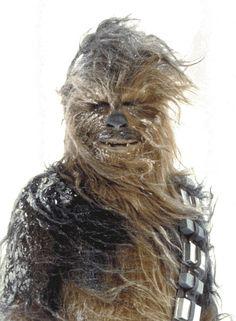 Chewbacca m'a toujours fait peur !!