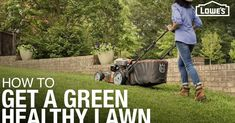 With all the rain we have had- imagine how gorgeous your property will look with these care tips! Lawn Care How to Weed, Seed, Feed, Mow, & Water Real Estate Articles, Real Estate Tips, Water Garden, Lawn And Garden, Lawn Care Companies, Lawn Care Business, Pergola Pictures, Energy Conservation, Weed Seeds