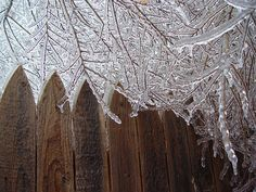 The exquisite beauty of an ice storm...