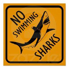 Haifisch-Australien-Zeichen Plakat von Zazzle.de