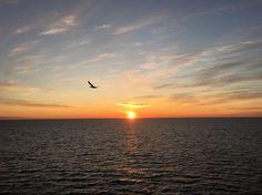 #scottland #kraken field #offshore #wish #you #all #a #fantastic #morning #segal #colors#sunset makes people happy #night #shift #exploringglobe #landscapeofnorway #nrkvestfold #nortrip #dreamchasersnorway #offshorelife #northseagigant #vessel #gladfjes av soloppgang også  by siv_lea