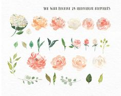 Flower Watercolour Clipart, Hand Painted Graphics - Peaches and cream. Digital graphic download with leaves, roses, peonies and hydrangeas. This is a digital clipart set containing separate flower and leaf elements and 2 finished arrangements all in PNG. format. Ideal for making greeting cards, prints, wedding invitations, blog headers and more. INSTANT DOWNLOAD You will be able to instantly download your set of clipart after you purchase. IN THIS CLIPART SET YOU WILL RECEIVE... A total…