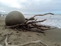 Moeraki Boulders NZ. They look alien but are formed quite naturally! #NZ #travel…