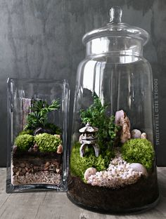 Custom Japanese Garden Terrarium with Miniature Path, Pagoda, Tree in a Large Apothecary Jar
