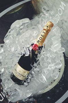 24 hour champagne diet