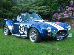 Shelby Cobra From Backyard