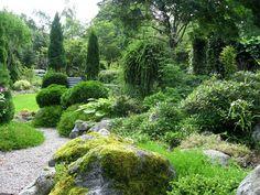 Landscape Focused: landscape garden design ideas Garden by Helen Lenninger. More images on her blog...