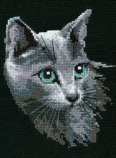 Newest Screen Cross Stitch cat Suggestions Russian Blue Cross Stitch Kit Cat Cross Stitches, Counted Cross Stitch Kits, Cross Stitching, Cross Stitch Embroidery, Embroidery Patterns, Cross Stitch Designs, Cross Stitch Patterns, Loom Patterns, Blue Cross