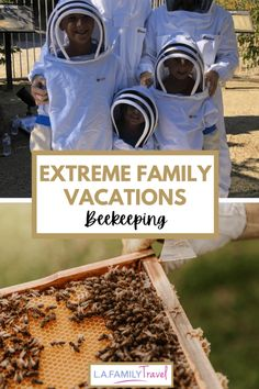 Extreme Family Vacations: Beekeeping - LA Family Travel