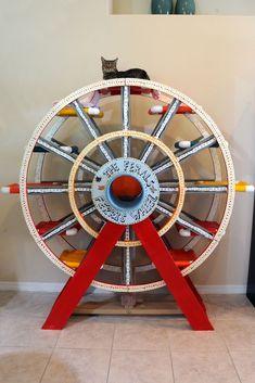 Kitty Ferris Wheel #CatHouse
