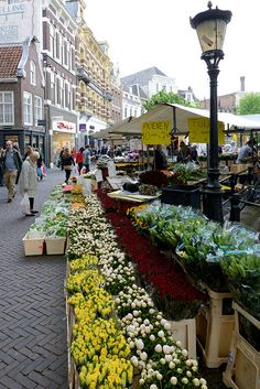 **Utrecht, The Netherlands Love to shop here! Fifty tulips for €5,- our hyacints or roses... Depending on the season! And all the market people yelling !! Fun! Utrecht has 2 other markets beside this  flowermarket! Each saturday.