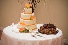 Wedding Cake and Groom's Cake in Houston