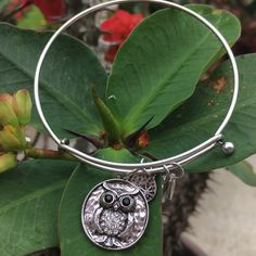⭐️Silver Owl Bangle⭐️ Absolutely gorgeous, handmade bangle. Color is antique silver (plated), crystal encrusted eyes and belly...brand new in plastic. Design is 3D, not flat. Wear one or stack it up with other gorgeous designs. Looks beautiful mixed within the Alex and Ani bangles! Jewelry Bracelets
