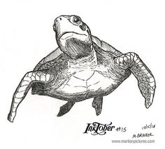 Inktober, Illustrations And Posters, Animal Art, Sketches, Drawings, Turtle Sketch, Art Drawings Sketches, Drawing Sketches, Art