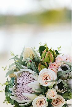 Nellie - Bride's bouquet. Australian natives and roses. King protea, proteas, banksia, roses, blushing bride, gum, Geraldton wax.