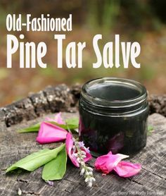 Old Fashioned Pine Tar Salve