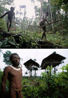 tribo1