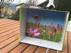 Die Schmetterling-Frühlingsbox – Magnetismus. Experimente mit Magneten.