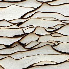 layered burnt paper