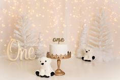Cake smash photography set up with twinkle lights for a winter scene with polar bears Photography Set Up, Cake Smash Photography, Twinkle Lights, Twinkle Twinkle, Fotos Ideas, Smash Cake Girl, Baby Poses, Polar Bears, Winter Scenes