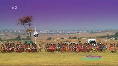 The Reed Dance Ceremony (Umhlanga) is where thousands of Swazi maidens gather reeds, wear traditional clothes, journey to Royal Kraal and perform to pay tribute to the Queen Mother. The only Swazi mai
