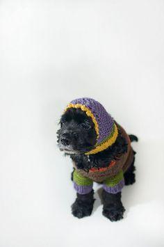 Luxuriöse  handgestrickte Designerhundehaube von fraubOLZadesign, $50,00
