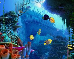 Coral reefs are the  most colorful places on earth.