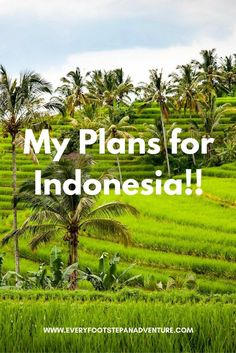 I'm Going to Indonesia
