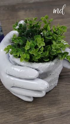 Plaster Crafts, Clay Pot Crafts, Concrete Crafts, Concrete Pots, Concrete Garden, Diy Crafts Hacks, Diy Home Crafts, Garden Crafts, Diy Garden Decor